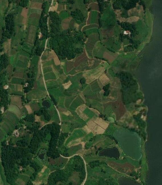 专业版谷歌地球地图永久版某拼购买